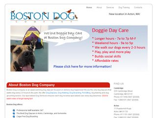 Boston Dog Company | Boarding