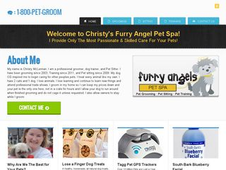 Furry Angels Pet Spa Alpharetta