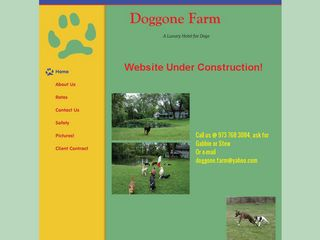 Doggone Farm | Boarding