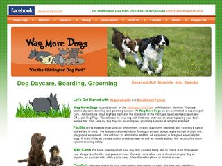 Wag More Dogs | Boarding