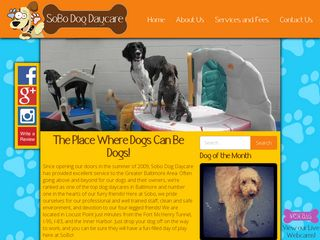 Photo of SoBo Dog Daycare Spa in Baltimore