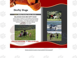 Derby Dogs | Boarding