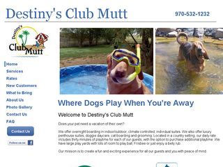 Destinys Club Mutt | Boarding