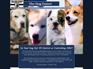 The Dog Tamer | Boarding