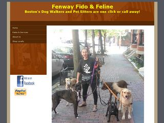 Photo of Fenway Fido  Feline in Boston