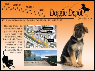 Doggie Depot North Boulder Incorporated | Boarding