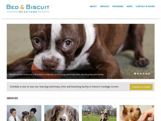 Beantown Bed Biscuit | Boarding