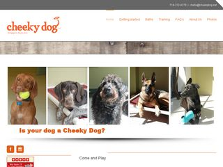 Cheeky Dog LLC   Day Care Boarding Playday Play Brooklyn