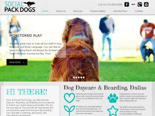 Social Pack Dogs | Boarding