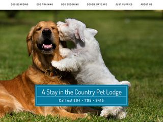 A Stay In the Country Pet Lodging | Boarding