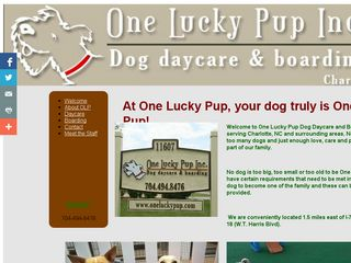 One Lucky Pup | Boarding