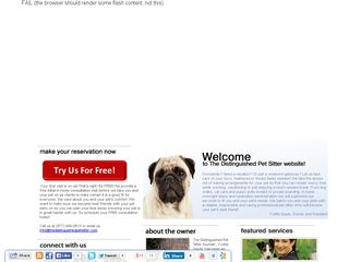 The Distinguished Pet Sitter   Charlotte NC Charlotte