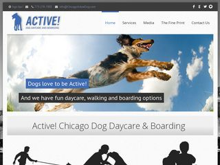 Active! Dog Daycare Chicago