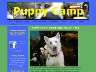 Puppy Camp | Boarding