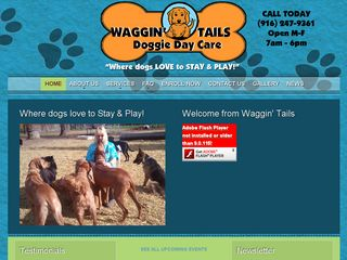 Waggin Tails | Boarding