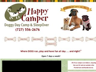 Doggy Day Camp Clearwater