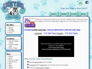 Lucky Dog Boarding Daycare and Training   Central Colorado Springs