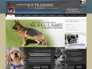 Assertive K 9 Training Kennels | Boarding