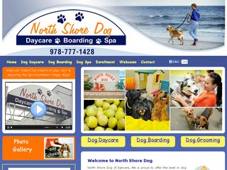 North Shore Dog Danvers