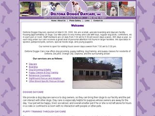 Deltona Doggie Daycare | Boarding