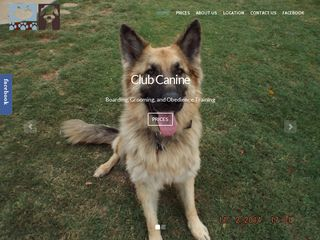 Club Canine | Boarding