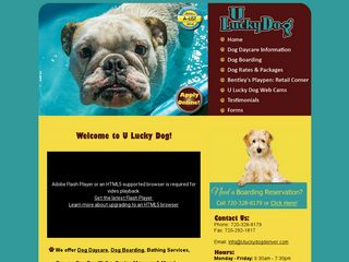U Lucky Dog Daycare Denver