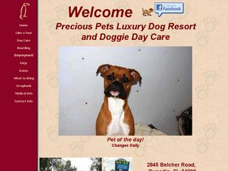 Precious Pets Luxury Dog Resort Dunedin