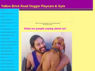 Yellow Brick Road Doggie Playcare | Boarding