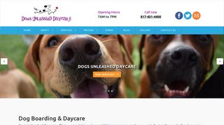 Dogs Unleashed Daycare | Boarding