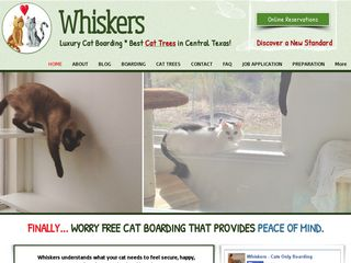 Whiskers Luxury Cat Boarding | Boarding