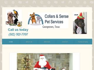 Collars  Sense Pet Services Georgetown