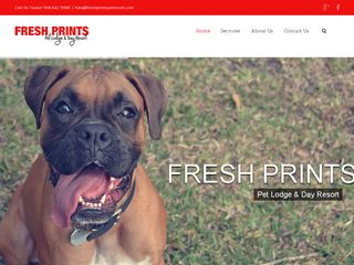 Fresh Prints Pet Lodge   Day Resort Jacksonville