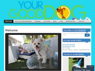 Your Good Dog Key Biscayne