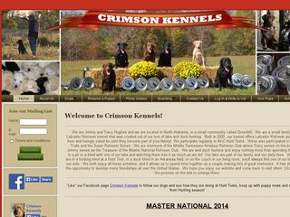 Crimson Kennels | Boarding