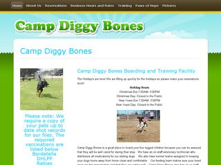 Camp Diggy Bones | Boarding
