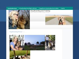 Dog Boarding and Training Chicago and Suburbs | Boarding