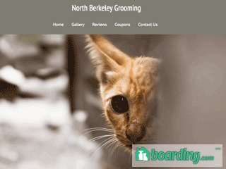 North Berkeley Grooming Martinsburg