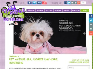 Pet Avenue Grooming & Daycare | Boarding