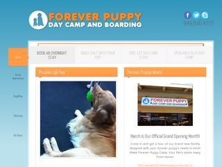 Forever Puppy | Boarding