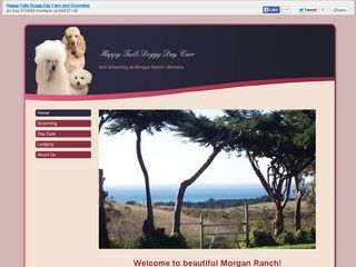 Happy Tails Doggy Day Care and Grooming | Boarding