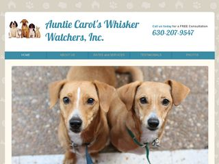 Auntie Carols Whisker Watchers | Boarding