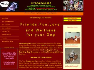 New York Dog Daycare New York