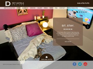 D Pet Hotels Chelsea New York