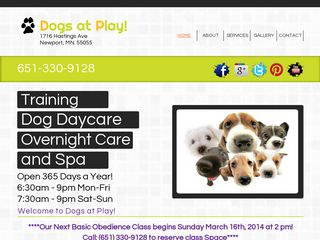 Dogs At Play | Boarding