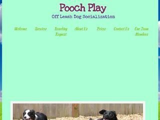 Pooch Play LLC North Bend