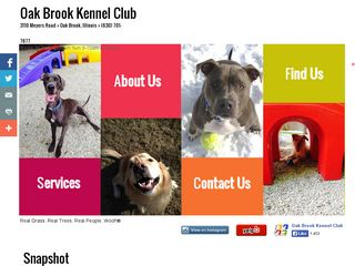 Oak Brook Kennel Club | Boarding