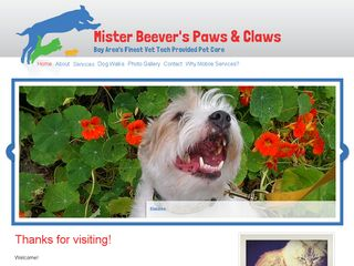 Mister Beevers Paws  Claws | Boarding