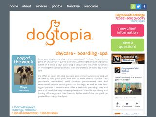 Dogtopia Old Bridge Township | Boarding