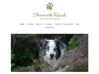 Shamrock Ranch Kennels | Boarding