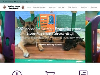 Lucky Dogs Daycare | Boarding